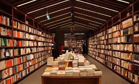 实体书店:困境中的坚守与重生